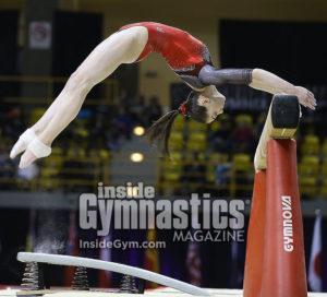 2017 International Gymnix